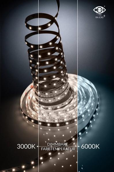 12V CCT LED Streifen - Lichtfarbe verstellbar (3000-6000K) - 5 Meter - 1000lm pro Meter - Warmweiß b